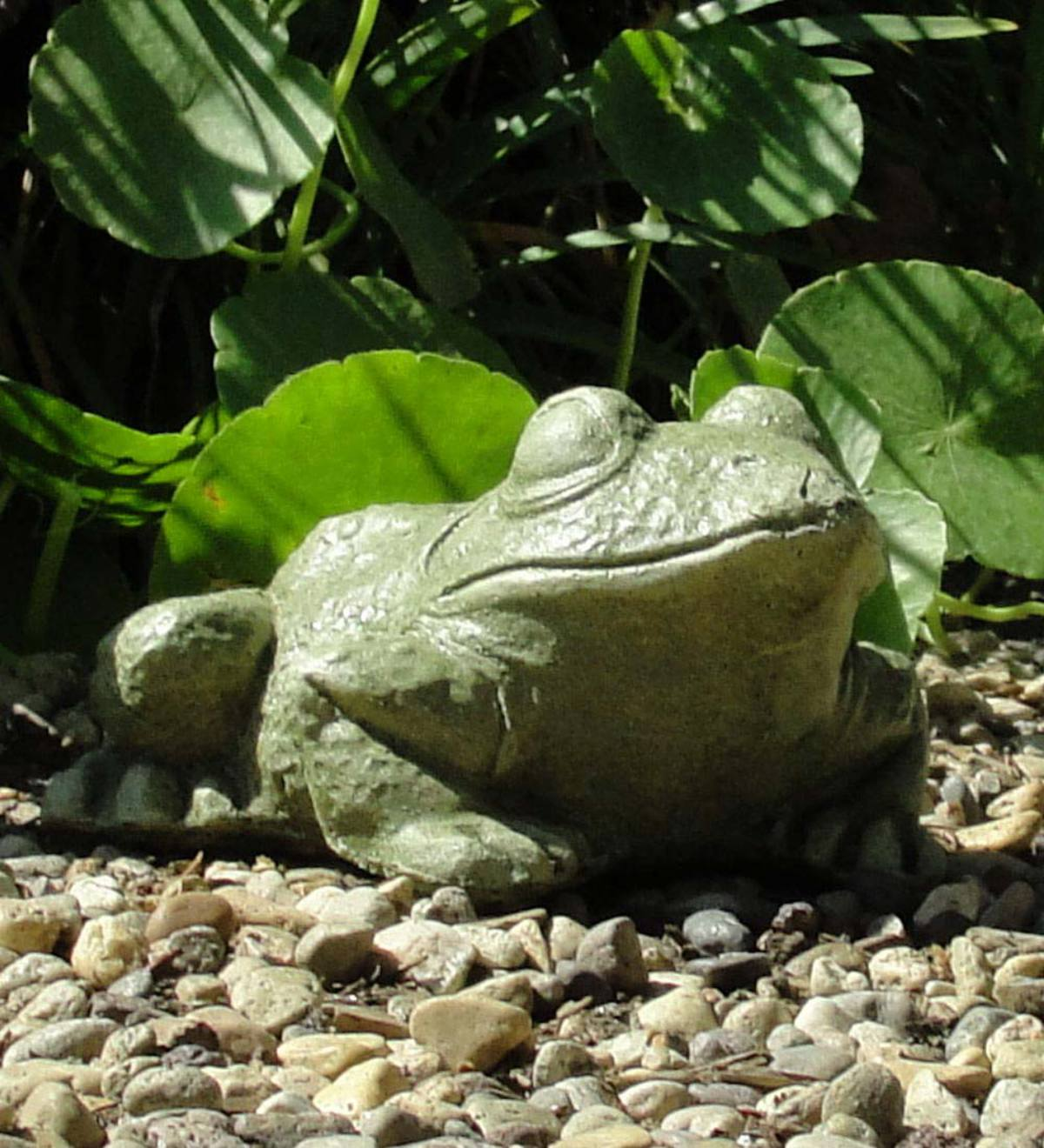 Cast Stone Bullfrog Sculpture