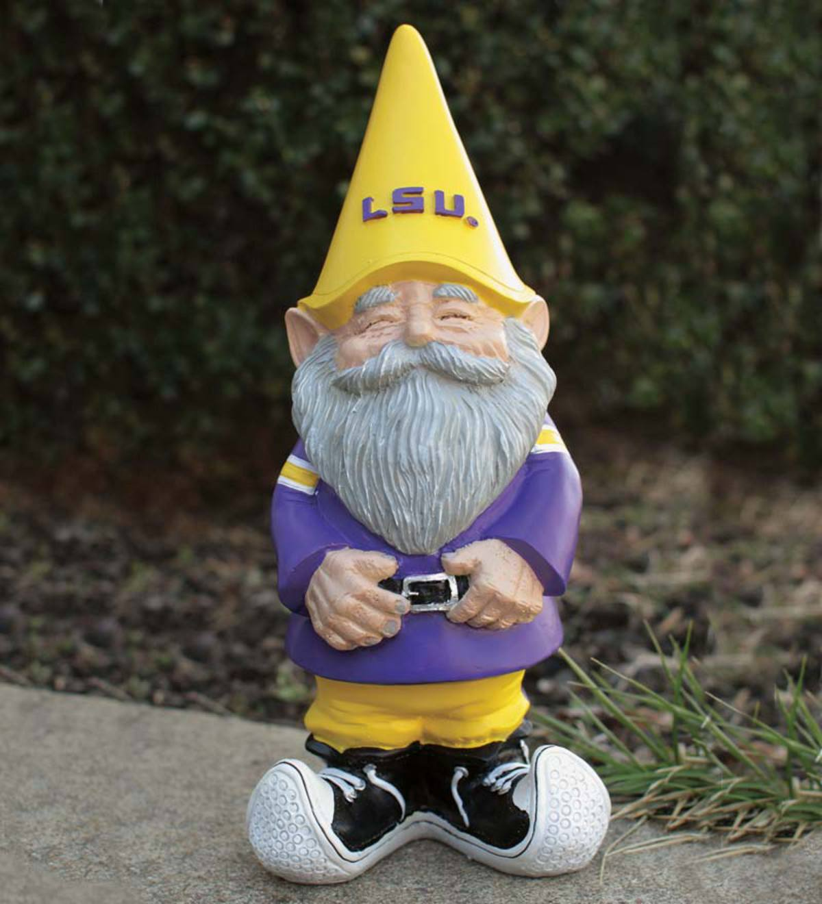 Collegiate Gnome