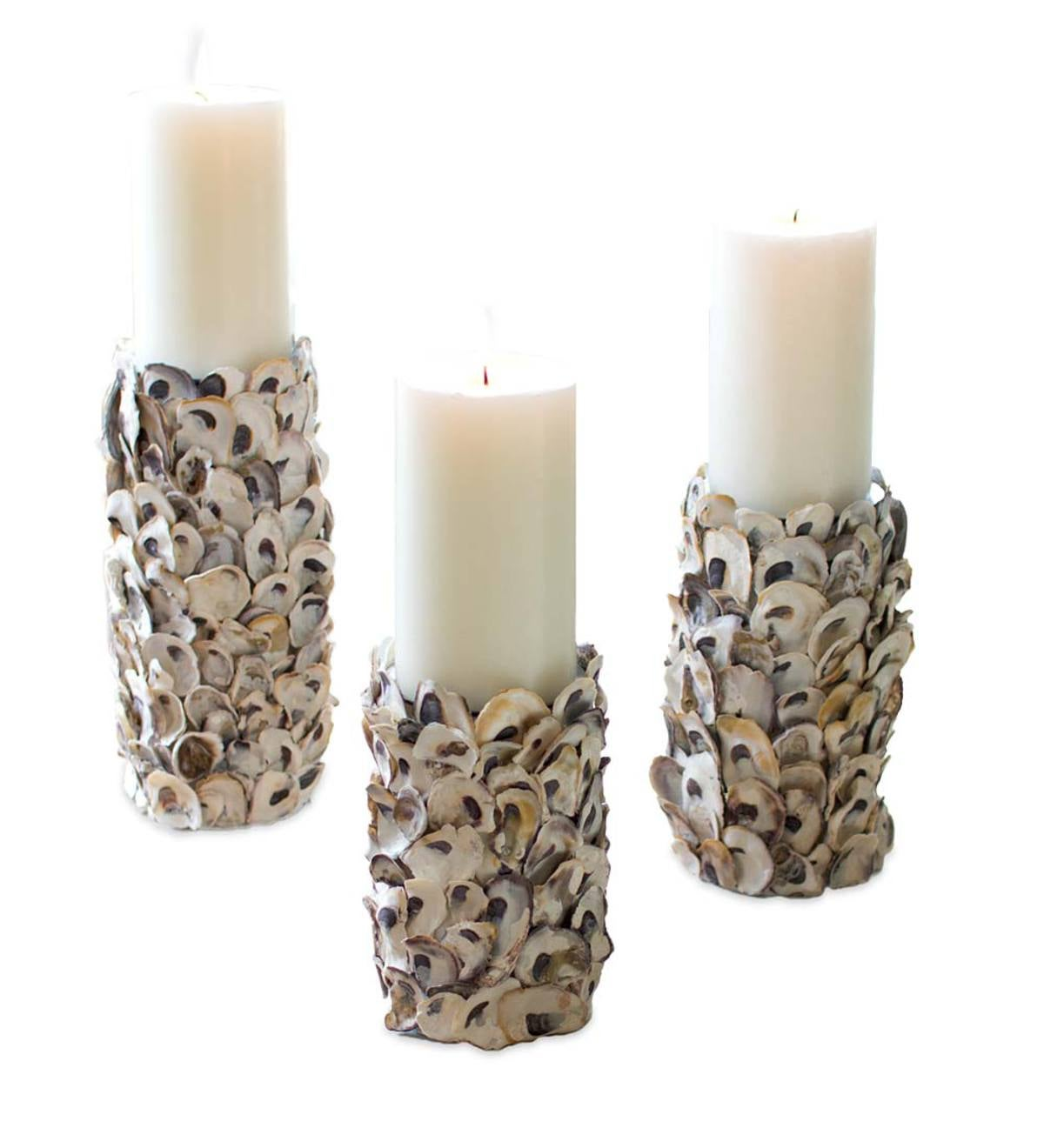 Oyster Shell Candle Holders, Set of 3