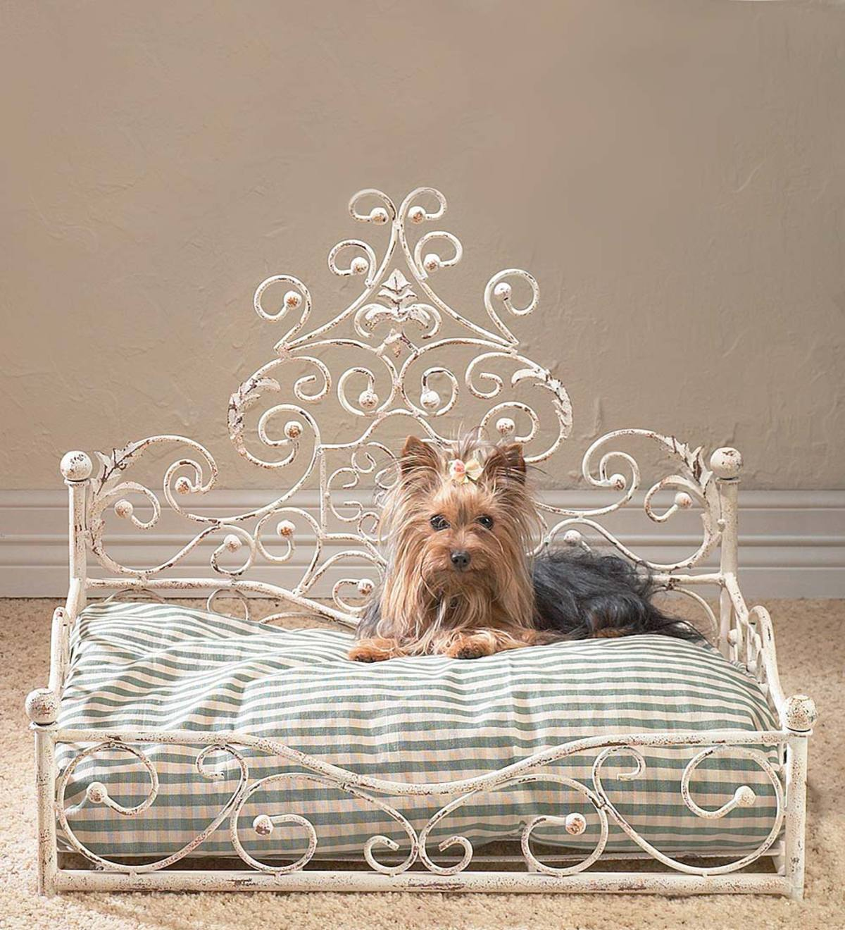 Iron Scrollwork Pet Daybed