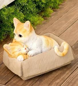 Resin Cats in Cardboard Boxes  - Free 2 Day Delivery - Orange