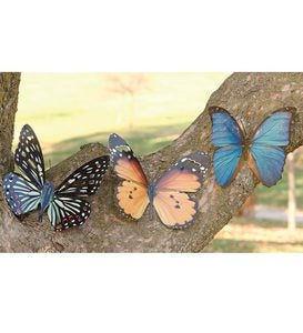 Tropical Butterfly Metal Wall Art