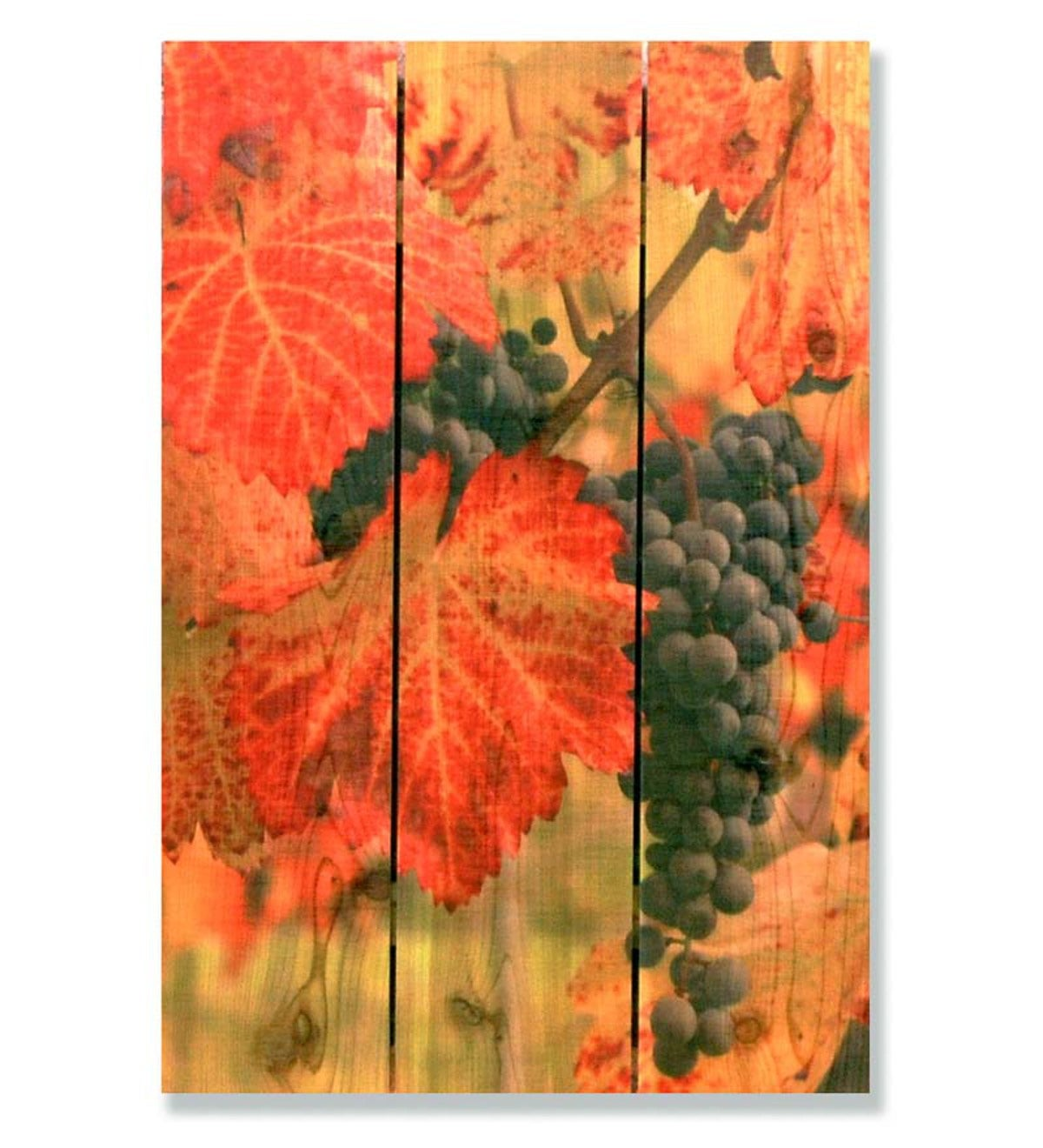 Handcrafted Summer Harvest Wooden Wall Art by Gizaun Art™