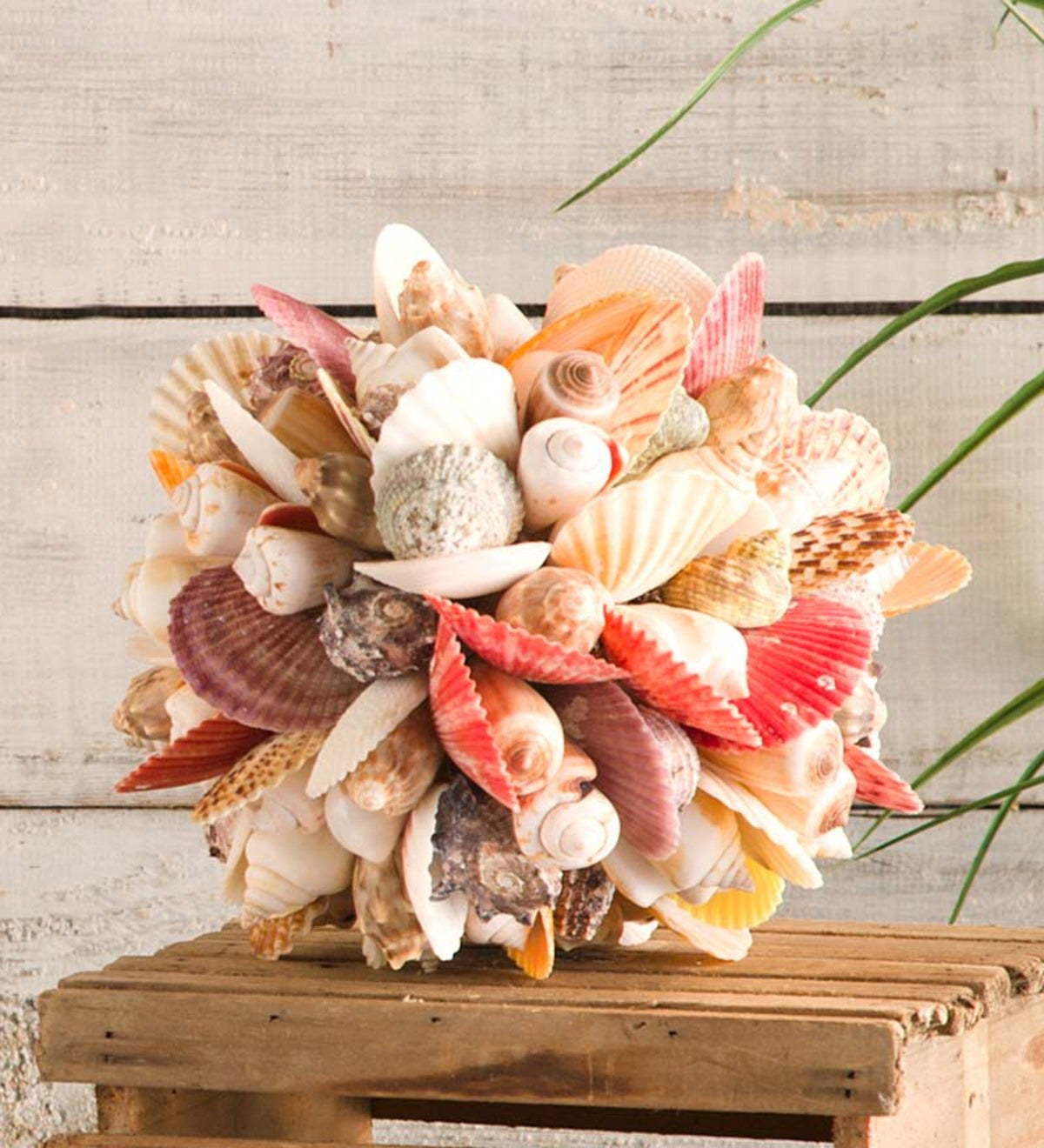 Colorful Shells Ball Accent