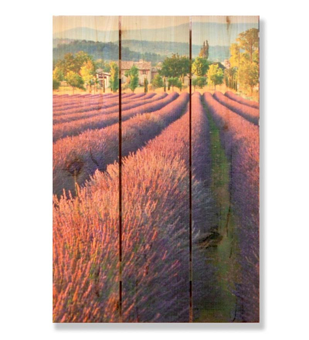 Handcrafted French Lavender Wooden Wall Art by Gizaun Art™
