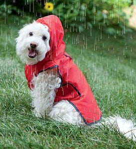 Roll-N-Go Dog Raincoat - Size=XS/SM fits back length 8