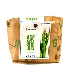 Organic Garden Vegetables Grow Kit - Asparagus