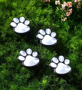 String of Four Solar Lighted Paw Print Garden Stakes with Solar Panel Stake
