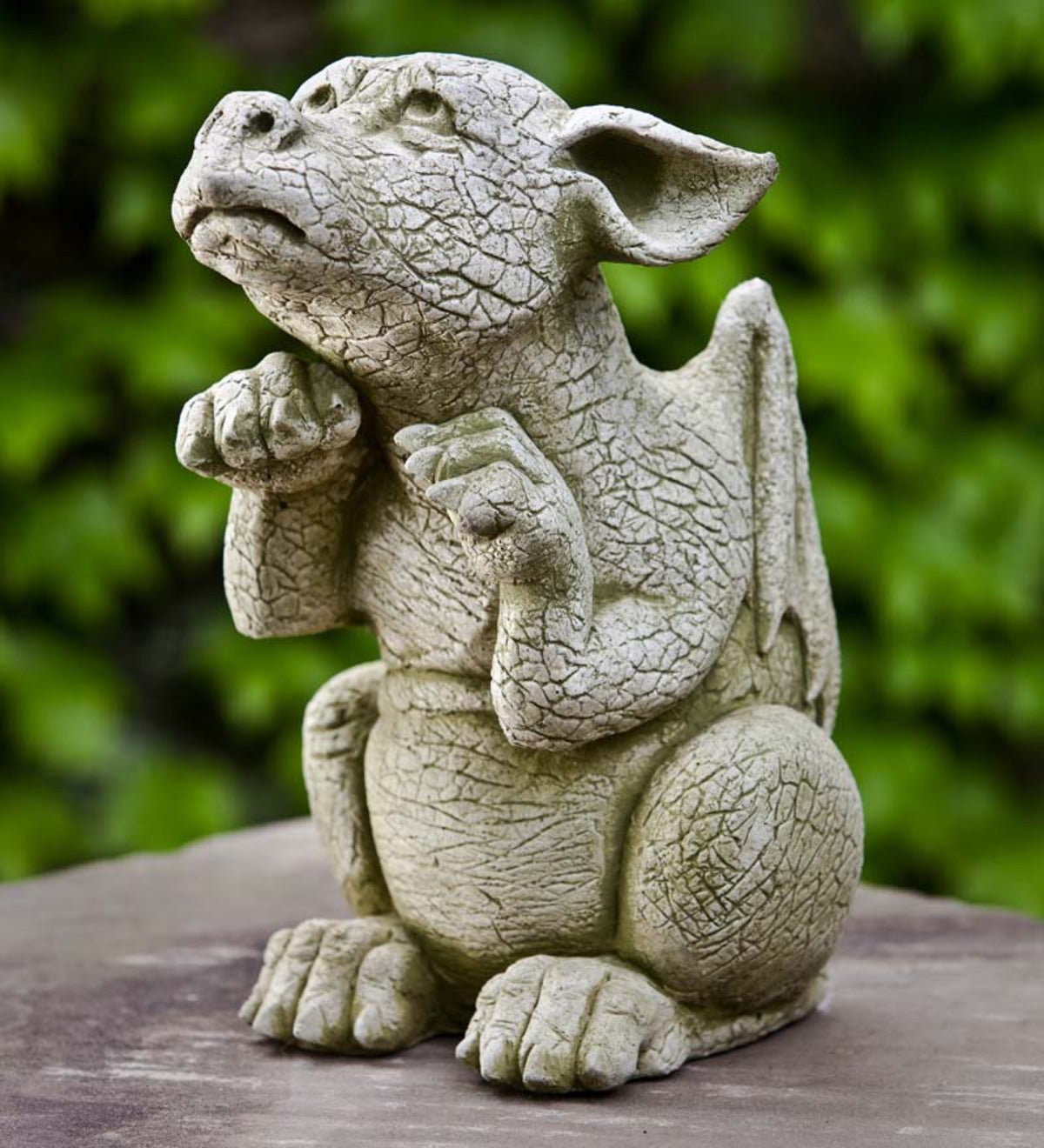 Cast Stone Begging Baby Dragon Garden Statue