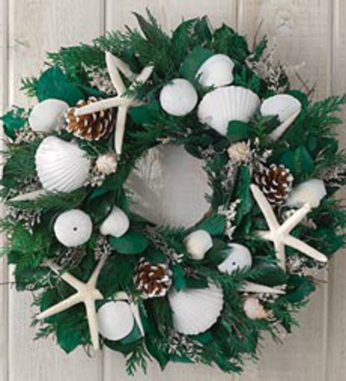 Winter Seashells Wreath