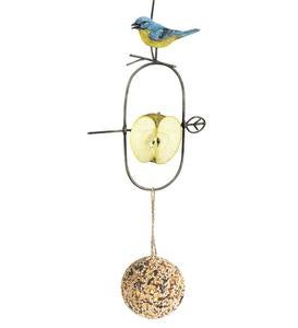 Bird Motif Fruit Spear Feeder and Seed Ball