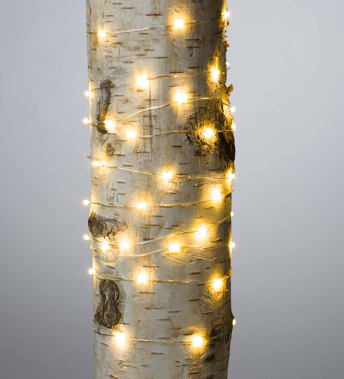 Firefly String Lights, 60 Warm White LEDs on Silver Wire, Battery Operated, 9'10