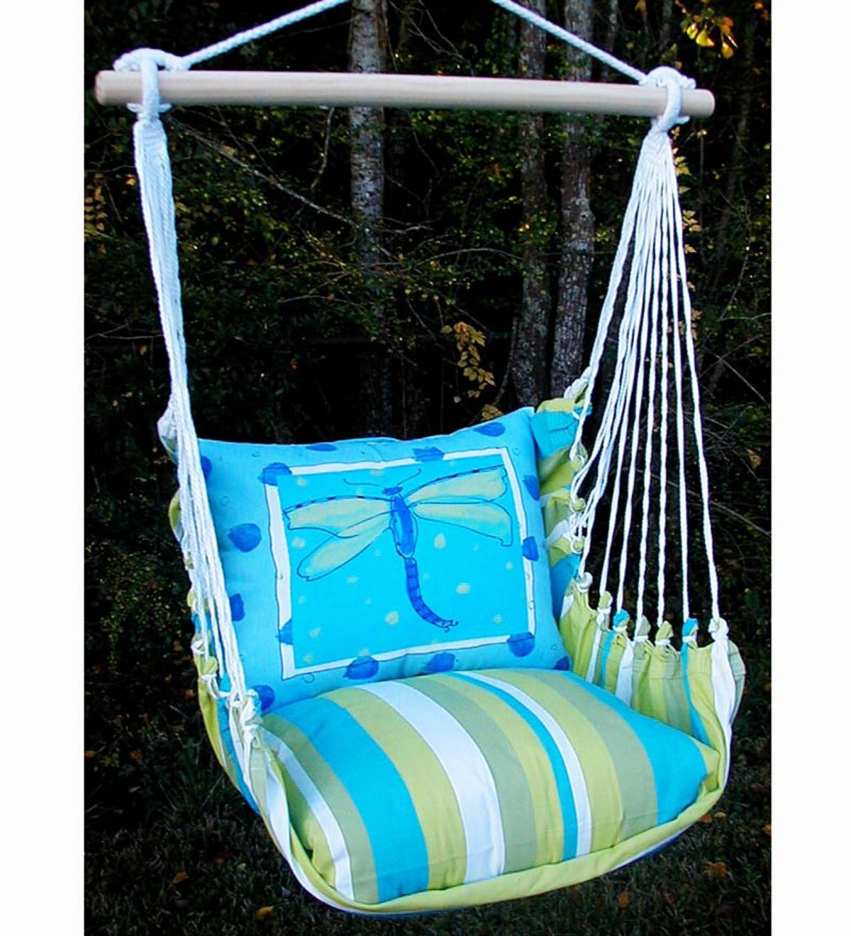 Dragonfly Hammock Swing Chair with Tote