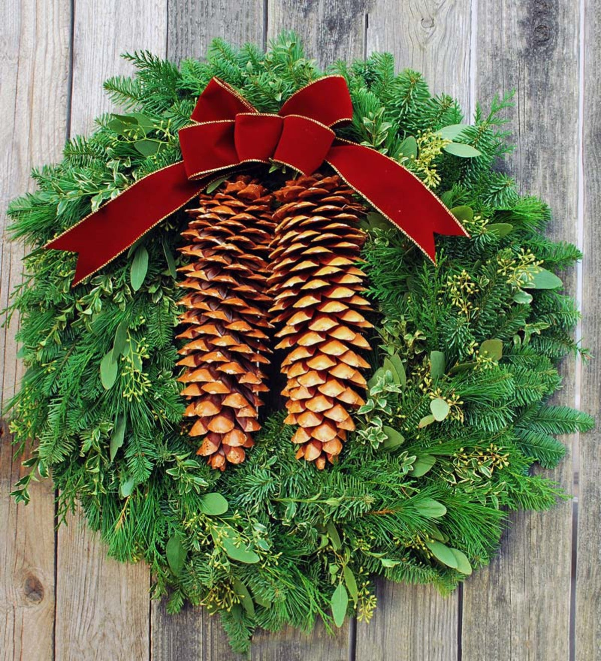 Handmade Fresh Tahoe Pine Holiday Wreath - 22""