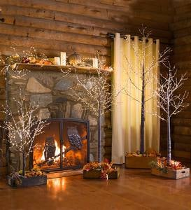 Large Lighted Holiday Birch Tree Accent - Brown