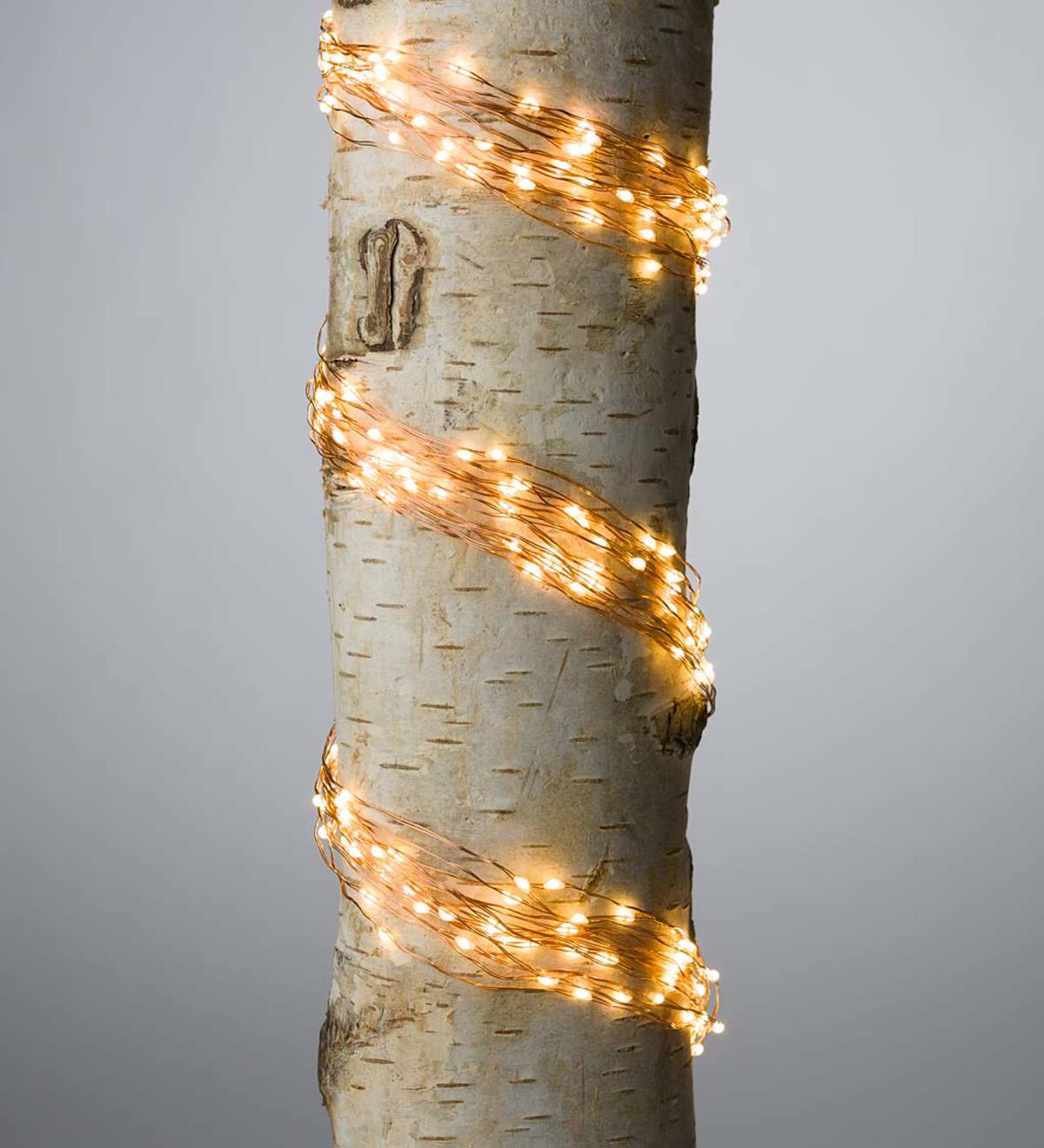 "Firefly Bunch Lights, 320 Warm White LEDs on Bendable Wires, Electric, 3'2""L - Copper"