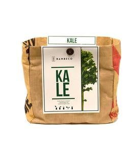Organic Garden Vegetables Grow Kit - Kale