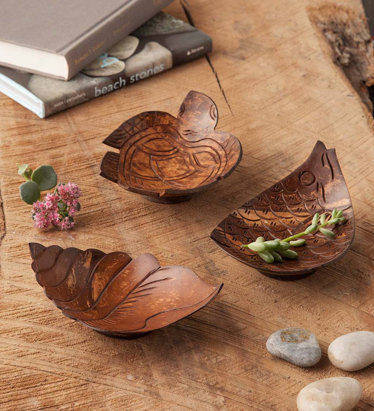 Coconut Shell Bowls, Set of 3