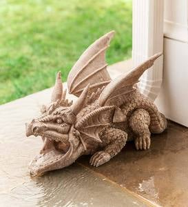 Dragon Downspout Cover