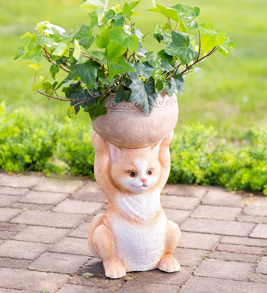 Cat Holding a Bowl Indoor/Outdoor Cast Resin Planter