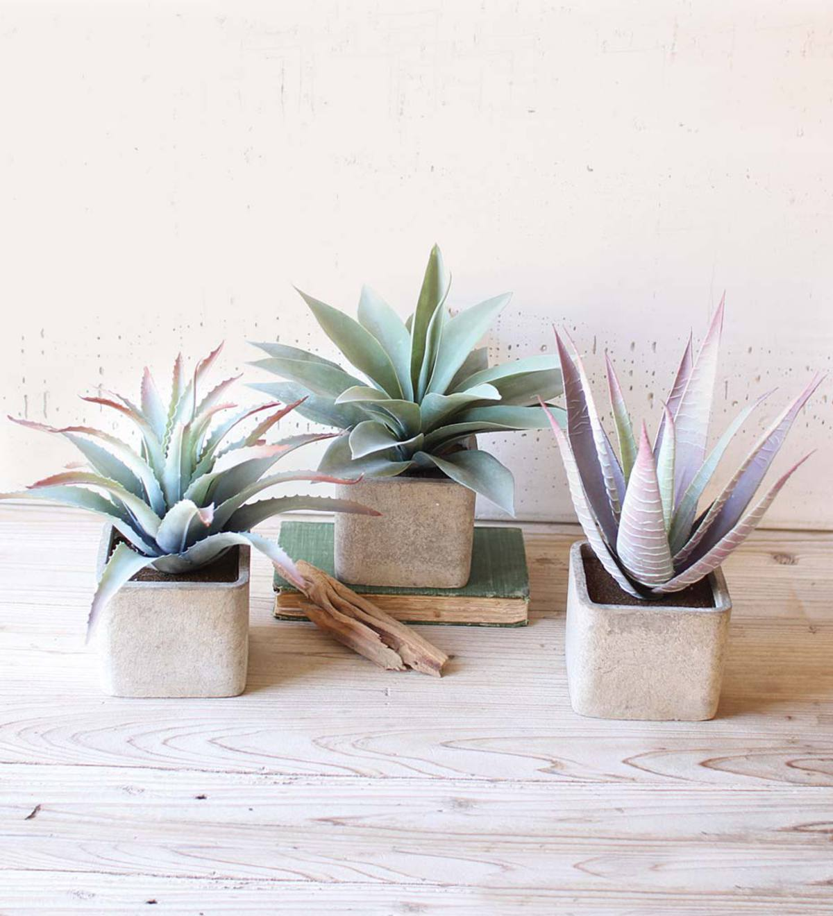 Assorted Faux Succulents in Square Pots, Set of 3