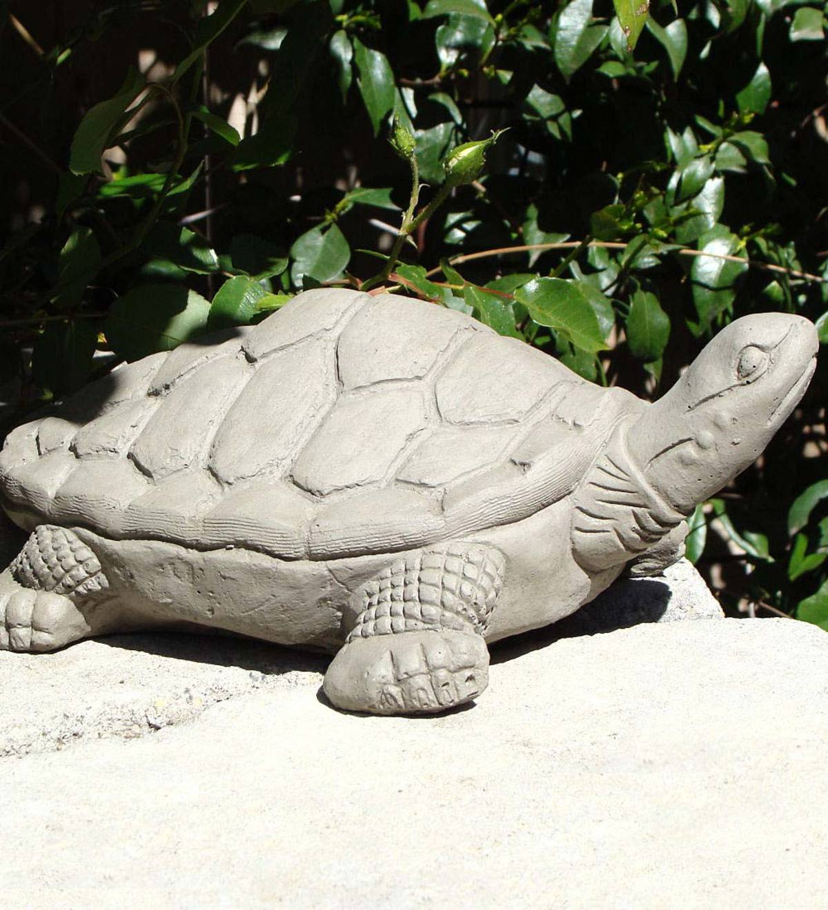 Large Desert Tortoise Sculpture