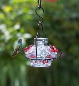 Pot de Créme Moon and Stars Hummingbird Feeder