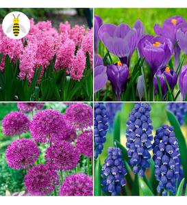 Pollinator-Friendly Bulb Collection, 100 bulbs in 4 varieties