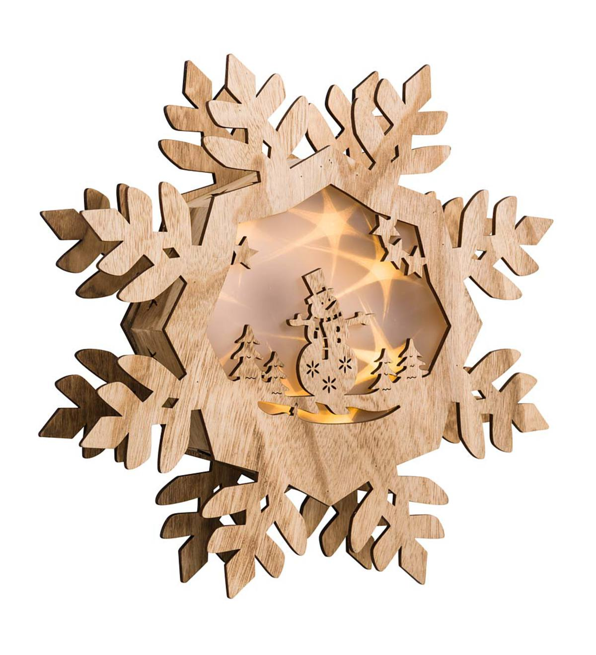 Snowflake with Lighted Holographic Inset