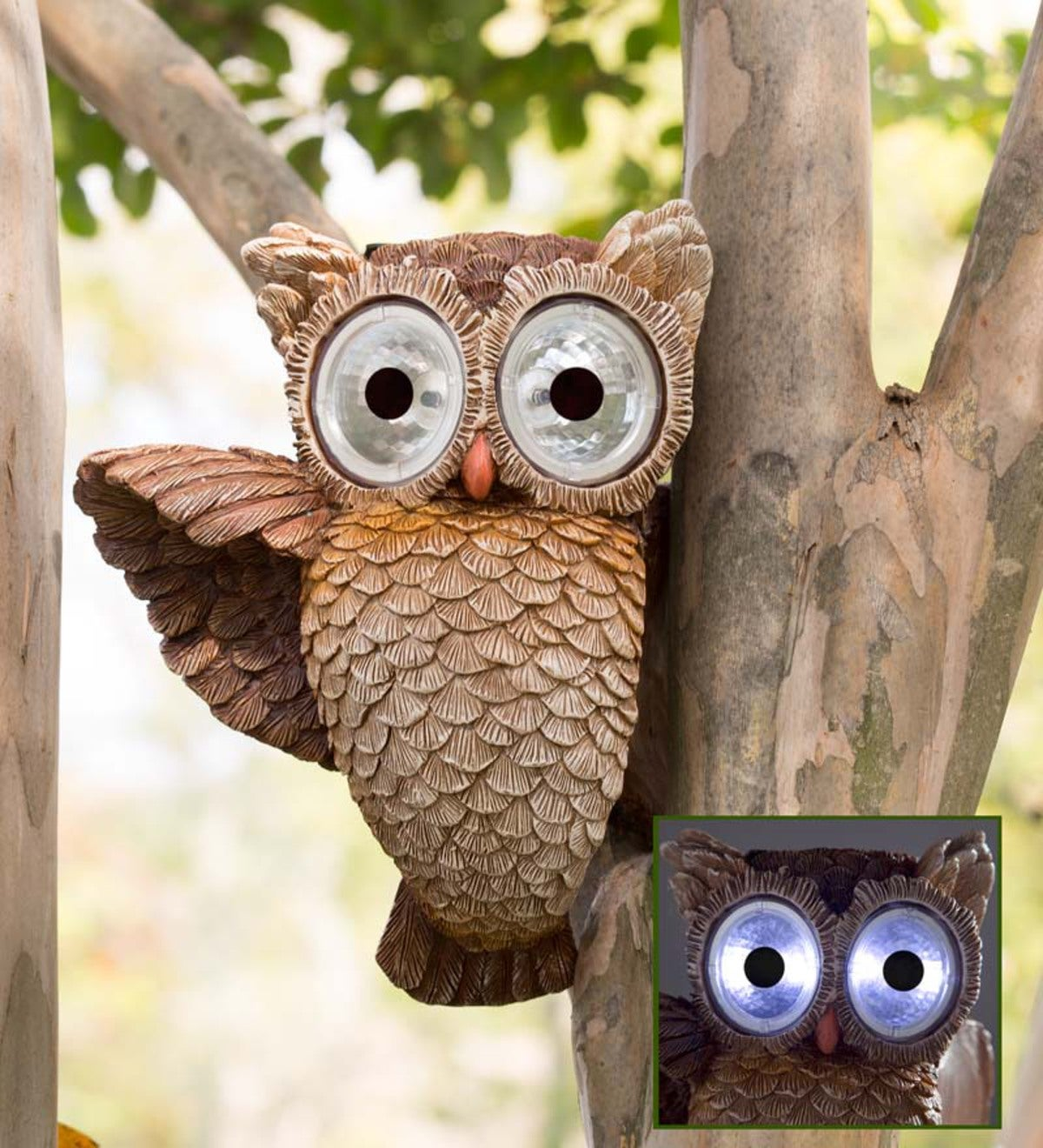 Glowing Owl Eyes Garden Sculpture | Wind and Weather