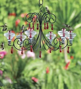 Glass Hummingbird Feeder, Mini Blossom Grand Chandelier