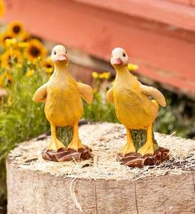 Duckling Figurines, Set of 2