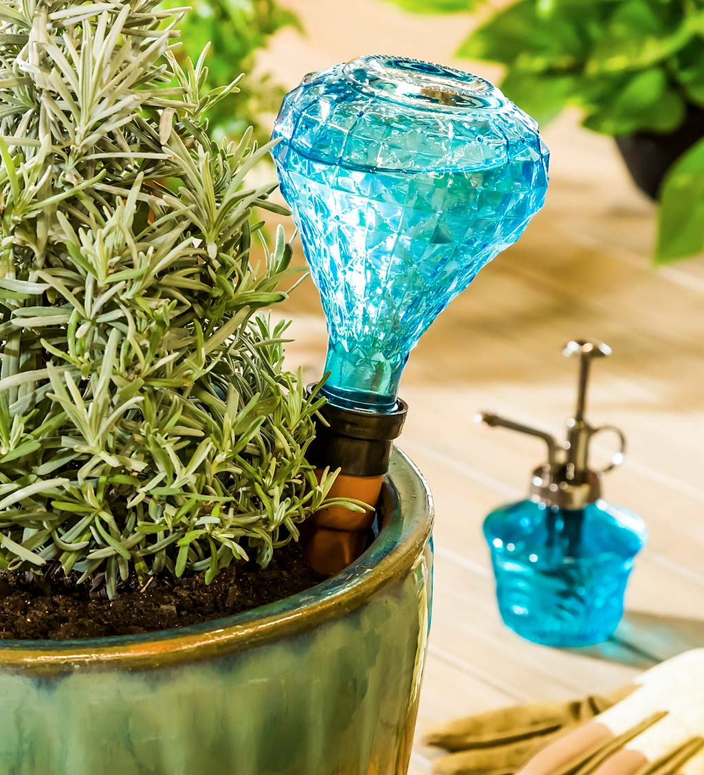 Faceted Glass House Plant Watering Gift Set - Smoke