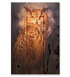 Handcrafted Owl Wooden Wall Art by Gizaun Art™