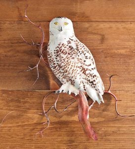 Snowy Owl On Branch Wall Sculpture by Bovano of Cheshire