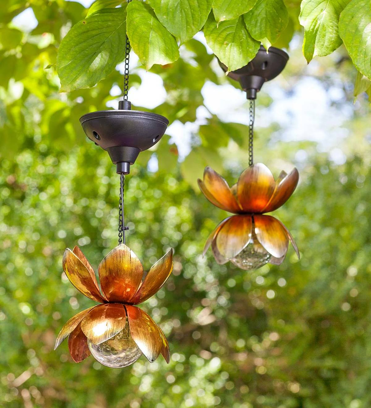 Hanging Metal Lotus Solar Lights, Set of 2