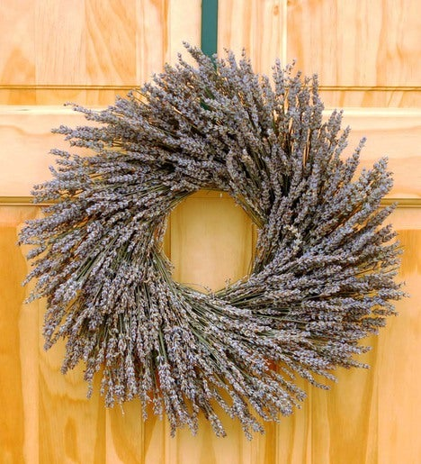 Christmas Tree Farms For Sale In Oregon: Dried Lavender Indoor Wreath