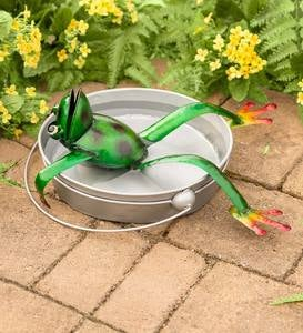 Handcrafted Metal Frog in a Bucket Birdbath