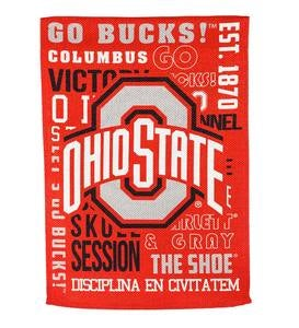 Double-Sided Fan Rules College Team Pride Sueded House Flag - Ohio State
