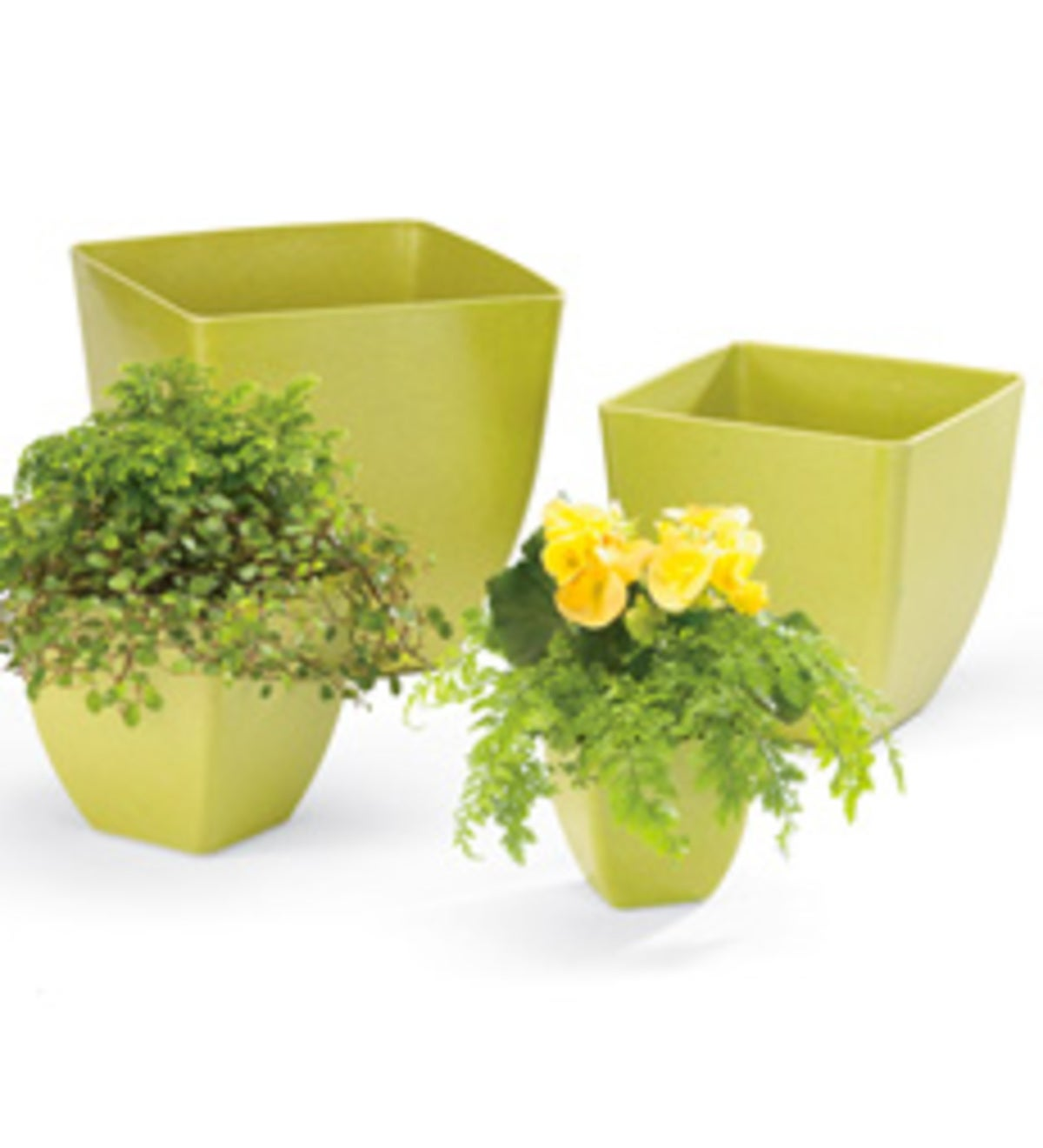 Bamboo Planters, set of 4