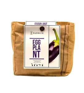 Organic Garden Vegetables Grow Kit - Eggplant